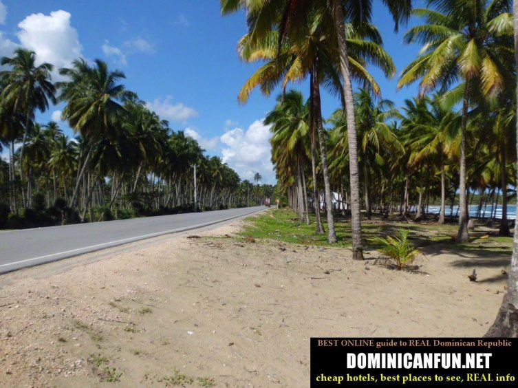 road Nagua - Samana , Dominican Republic