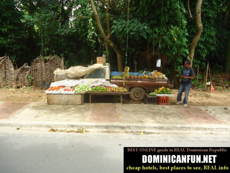 street vendor selling fruits, Dominican Republic