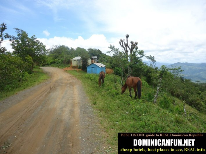 some bad road near san jose de ocoa